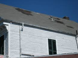 Shingles can be damaged in many types of storms, including wind storms.